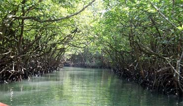 Andaman Lagoons - Popular 6 Nights 7 Days Tour Package in Andaman Islands